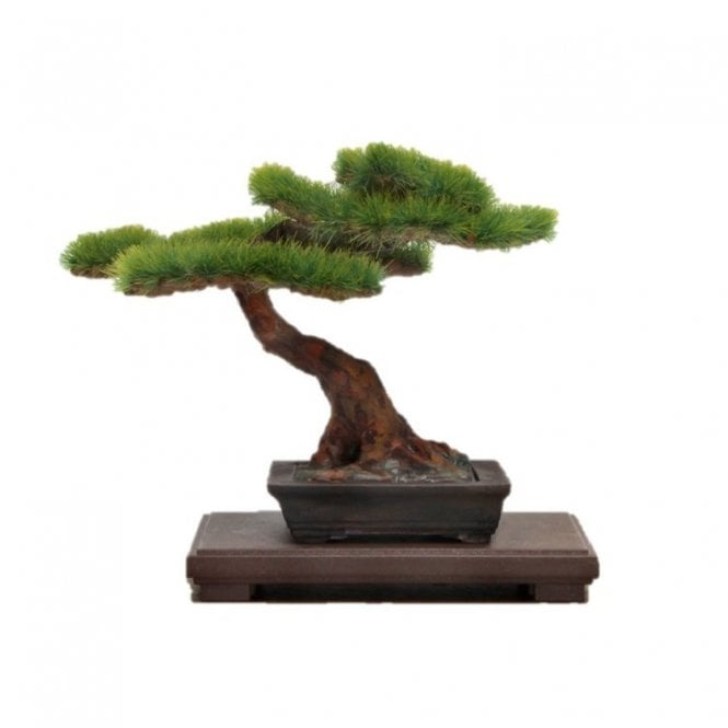 The Bonsai 1/12 Scale Plastic Model Kit 2